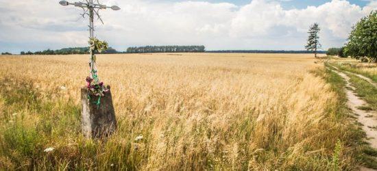 Stanowisko Stowarzyszenia SOISH wobec projektu ustawy o świeckim państwie Stowarzyszenia Inicjatywa Polska